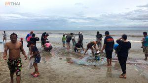 ปรากฎการณ์น้ำเบียด ที่หัวหิน ชาวบ้านแห่จับปลาแน่นหาด