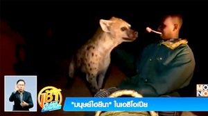 ฮือฮา! มนุษย์ไฮยีนา ในเอธิโอเปีย ลุยป้อนอาหารให้ปากต่อปาก
