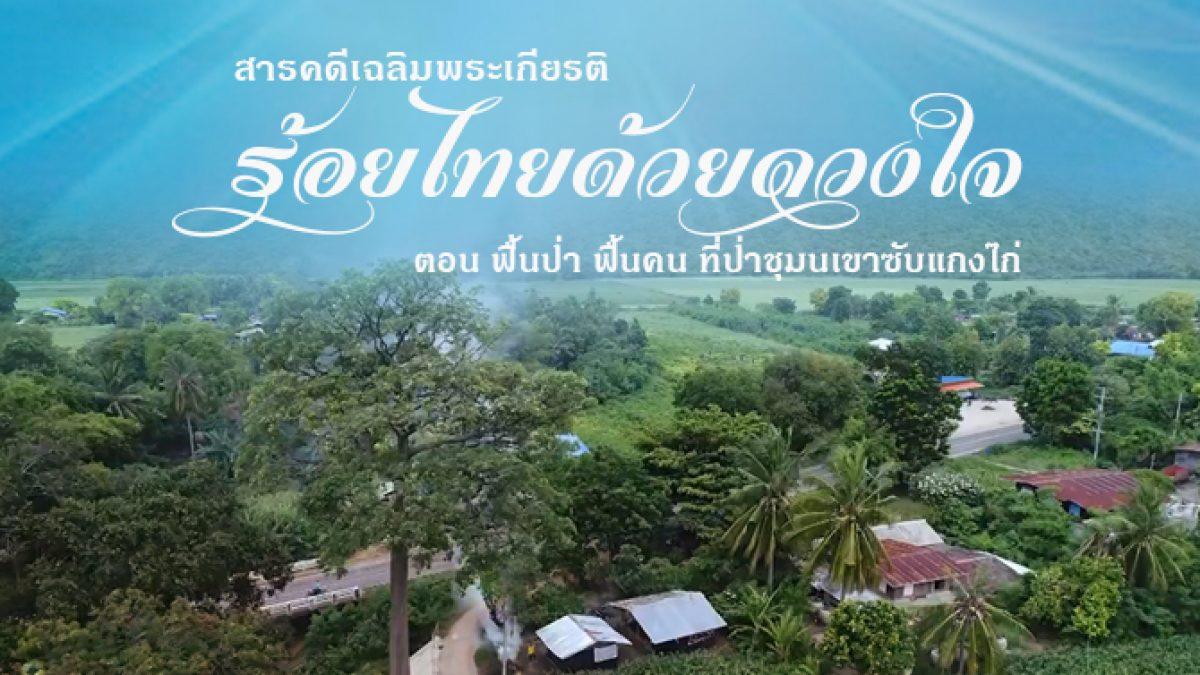 สารคดีเฉลิมพระเกียรติ ร้อยไทยด้วยดวงใจ ตอน ฟื้นป่า ฟื้นคน ที่ป่าชุมนเขาซับแกงไก่