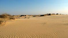 """""""โอเลชสกี้ แซนด์"""" ทะเลทรายในยูเครน แห้งแล้งแต่สวยงาม"""