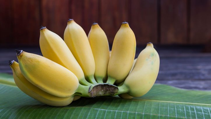 10 ประโยชน์ของกล้วยน้ำว้า ช่วยรักษาได้สารพัดโรค ของดีใกล้ตัวคุณ!!