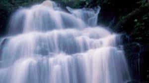 ภูหินร่องกล้า มหัศจรรย์ลานหินแตก น้ำตกหมันแดง แหล่งลิ้นมังกรสีชมพู จ.พิษณุโลก
