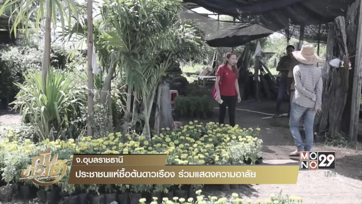 ประชาชนแห่ซื้อต้นดาวเรือง ร่วมแสดงความอาลัย