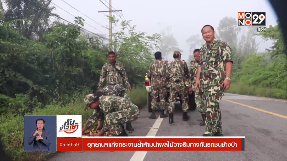 อุทยานฯแก่งกระจานย้ำห้ามนำผลไม้วางริมทางกันรถชนช้างป่า