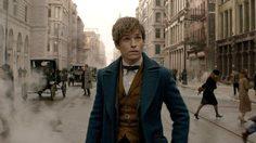 10 เรื่องน่ารู้ ของ นิวท์ สคามันเดอร์ (Newt Scamander) จาก Fantastic Beasts