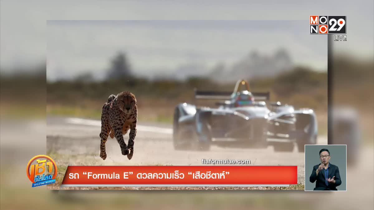 """รถ """"Formula E"""" ดวลความเร็ว """"เสือชีตาห์"""""""