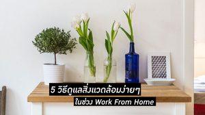 5 วิธีดูแลสิ่งแวดล้อมง่ายๆ ทำได้ในชีวิตประจำวัน ช่วง Work From Home
