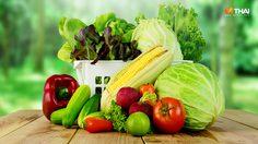 กินอาหารตามธาตุ ลดความเสี่ยงในการเจ็บป่วย มาดูอาหารของทั้ง 12 ราศี กันเลย