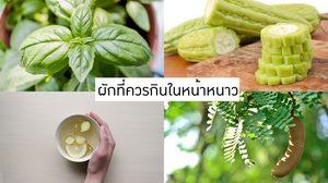 4 ผักที่ควรกินในหน้าหนาว ช่วยเพิ่มภูมิคุ้มกันให้ร่างกาย
