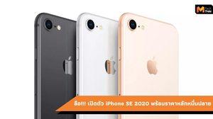 เตรียมหยุดผลิต iPhone 7 และ iPhone 8 หลังจากที่เปิดตัว iPhone 11