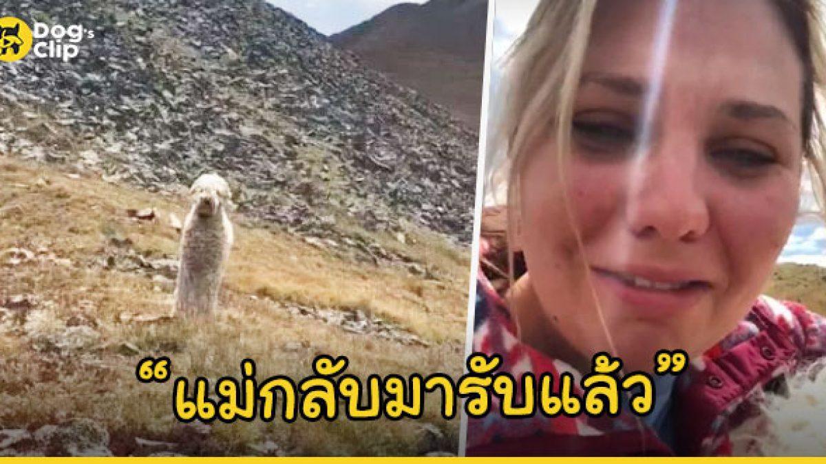 สาวดีใจจนหลั่งน้ำตา เมื่อได้พบหน้าน้องหมาแสนรักอีกครั้ง หลังเกิดอุบัติเหตุจนหายตัวไปกลางหุบเขากว่า 19 วัน