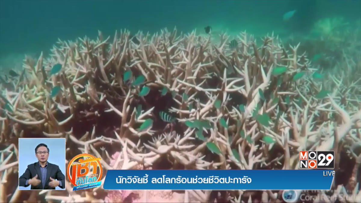นักวิจัยชี้ ลดโลกร้อนช่วยชีวิตปะการัง