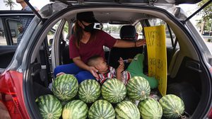 รถเปิดท้าย ขายแตงโม สู้วิกฤติ โควิด-19