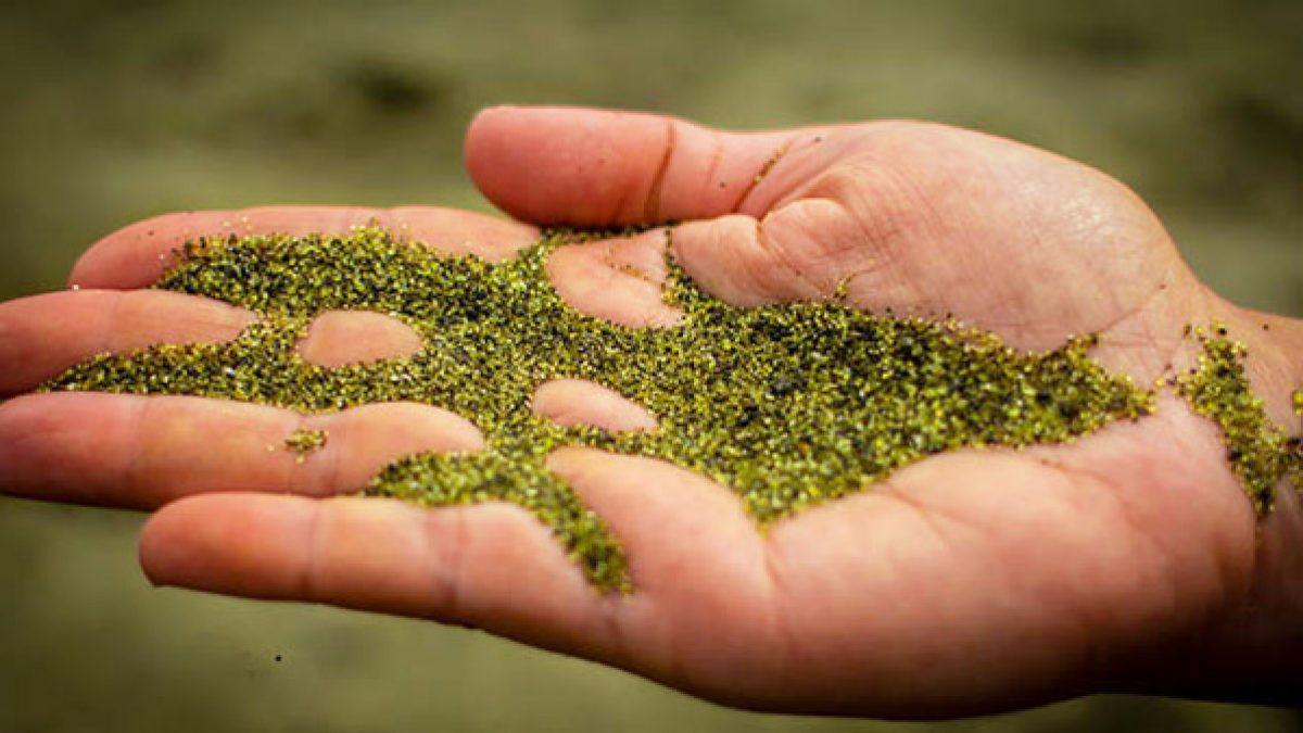 ชายหาดหาดทรายสีเขียว บนเกาะฮาวาย