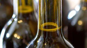 3 สูตรน้ำหมักชีวภาพ ไล่แมลงด้วยสะเดาทำเองได้ปลอดสารเคมี