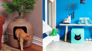 รวมไอเดียตกแต่ง ห้องน้ำแมว อย่างมีดีไซน์ให้เข้ากับบ้าน