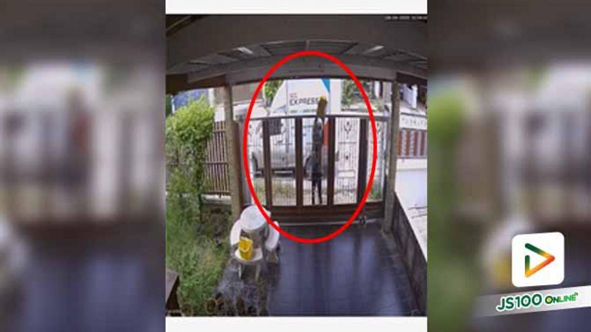 เห็นกล่องกองอยู่บนพื้นปูน นึกว่าโดนชู้ตเป็นลูกบาสข้ามรั้ว ที่ไหนได้... (28/04/2020)
