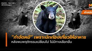 """จนท. ในสหรัฐฯ ตัดสินใจ """"กำจัด"""" หมีดำ หลังพฤติกรรมเปลี่ยน ออกมานั่งรออาหาร"""