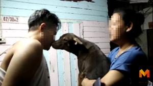 """บุกสลัมรวบ """"อาร์ท ป่าช้าจีน"""" ค้ายาบ้า ก่อนจากขอจูบลาสุนัขแสนรัก"""