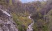 ป่าวอลนัตโบราณในคีร์กิซสถาน