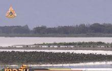 ปริมาณน้ำกว๊านพะเยาลดลงใกล้วิกฤต