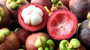มังคุด ราชินีผลไม้ ประโยชน์เน้นๆ ช่วยรักษาข้อเสื่อม ต้านโรคมะเร็ง!!!