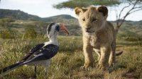 ตัวอย่างหนัง The Lion King Live Action - เดอะไลอ้อนคิง