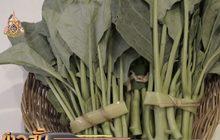 เตรียมเปิดตลาดสินค้าออกานิกช่วยกลุ่มเกษตรกรอินทรีย์