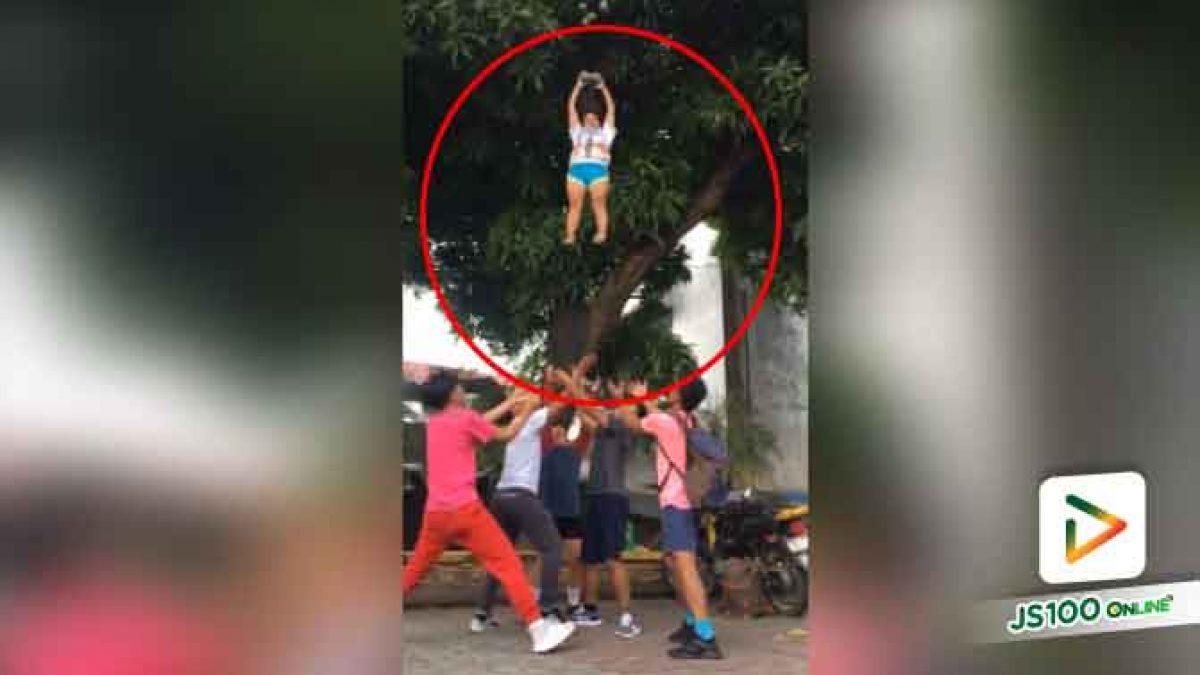 คลิปเด็กวัยรุ่นที่ประเทศฟิลิปปินส์ มีไอเดียการเก็บมะม่วงแบบใหม่ (18-06-61)