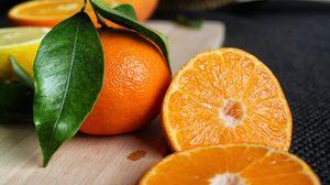 ประโยชน์ของส้ม แหล่งรวมวิตามิน และแร่ธาตุ