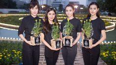 """4 สาวตัวแทน มิสทีน ไทยแลนด์ ชวนปลูกดอกดาวเรืองใน """"หยาดเหงื่อพระราชา"""""""