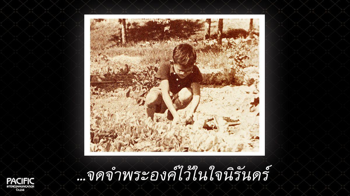 80 วัน ก่อนการกราบลา - บันทึกไทยบันทึกพระชนมชีพ