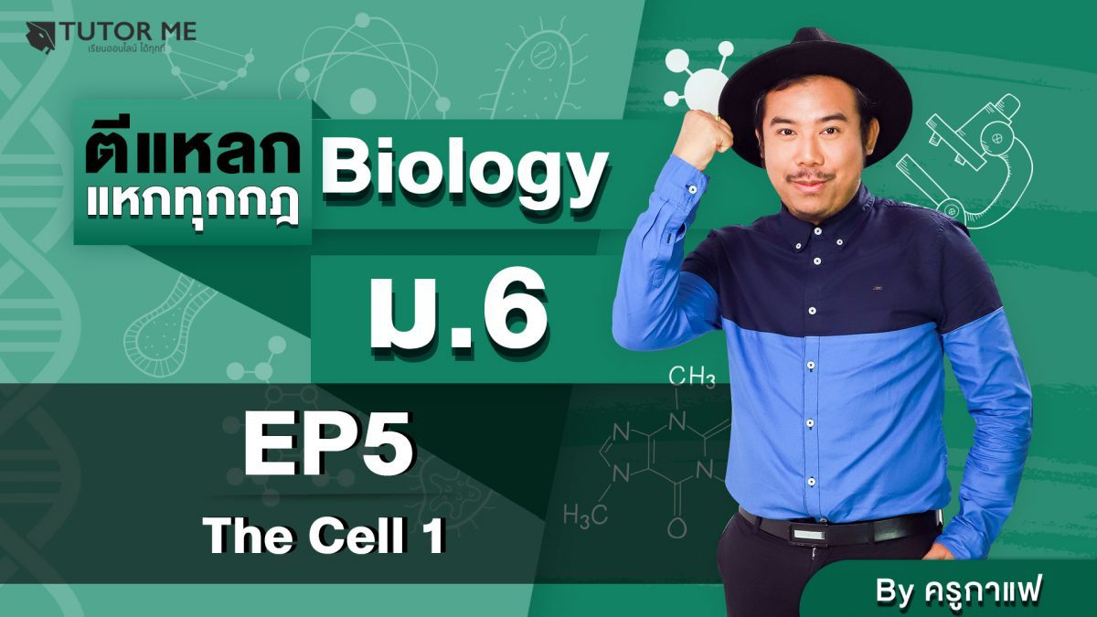 EP 5 The Cell 1