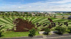 """สมความตั้งใจ! เยาวชนญี่ปุ่นปลูกนาข้าวเป็น """"ก็อดซิลลา"""" ต้อนรับ Shin Godzilla"""