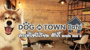 Dog In Town Cafe คาเฟ่ไซบีเรียน ฮักกี้ เอกมัย ซอย6