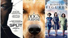 A Dog's Purpose เปิดตัวแรงอันดับที่สอง รองจาก Split จิตหลุดโลก ยังรั้งอันดับที่หนึ่ง
