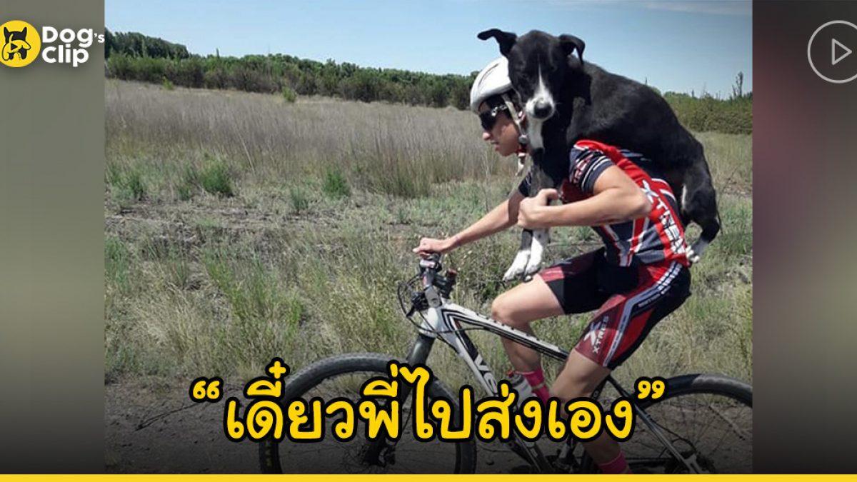 นักปั่นจักรยานหยุดกลางคันเพื่อช่วยน้องหมากลางพื้นที่ห่างไกล ก่อนแบกขึ้นหลังช่วยพาเข้าเมือง