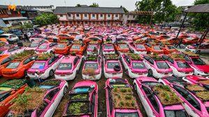 เปลี่ยนสุสานแท็กซี่ เป็นแปลงผัก-เลี้ยงกบ บนหลังคารถ