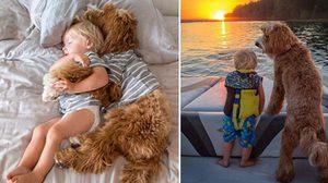 15 โมเม้นต์ มิตรภาพอันอบอุ่น ระหว่าง เด็กน้อย กับ น้องหมาปุกปุย น่ารักอ่ะ!!