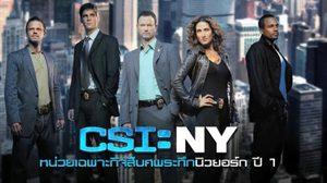 สืบสวนสยอง ค้นการตายปริศนาอันน่าสะพรึงกลัวกับ CSI: NY Season 4
