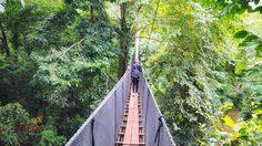 พาตัวเองไปชาร์จแบต กับ 6 เส้นทาง เดินชมธรรมชาติ ป่าชายเลน