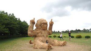 """Wara Art Festivel 2018""ศิลปะสัตว์จากฟางข้าว สไตล์เจแปน"