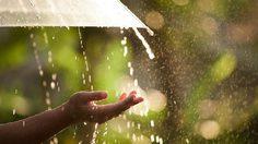 ฤดูฝนของประเทศไทย
