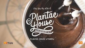 ร้านกาแฟ นั่งทำงาน บางแสน | อ่าน ฟิน กิน สวีท ที่ PLANTAE HOUSE บางแสน