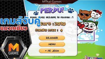 เกมส์จับคู่แมวเหมียว Cat Connection
