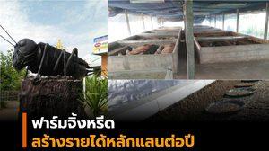 ฟาร์มจิ้งหรีด ทางเลือกเสริมอาชีพเกษตรกร รายได้หลักแสนต่อปี