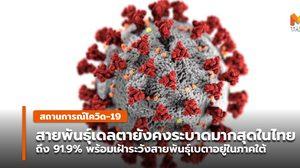 สายพันธุ์เดลตายังคงระบาดมากสุดในไทย สัดส่วนถึง 91.9%