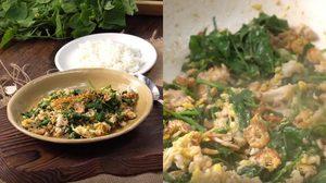 วิธีทำ ผัดตำลึงหมูสับ เมนูอร่อย ทำกินเองง่ายๆ ที่บ้าน