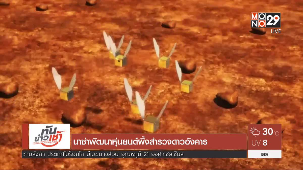 นาซ่าพัฒนาหุ่นยนต์ผึ้งสำรวจดาวอังคาร