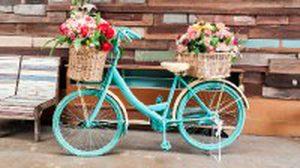 เปลี่ยนจักรยานเก่าให้กลายเป็น สวนดอกไม้